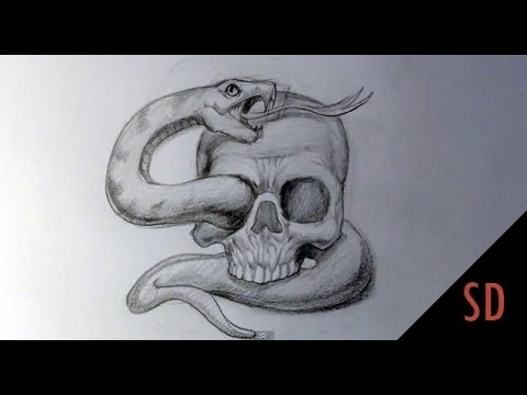 How to Draw Skull and Snake Tattoo – Skull Drawings Video