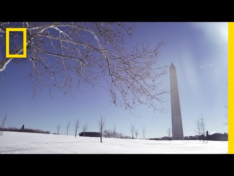 Beautiful Scenes From the Snowstorm in Washington, D.C. | National Geographic thumbnail