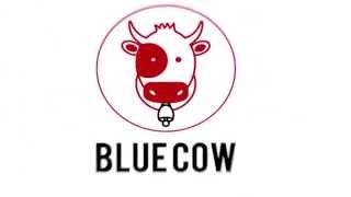Blue Cow Studios: Promo Video