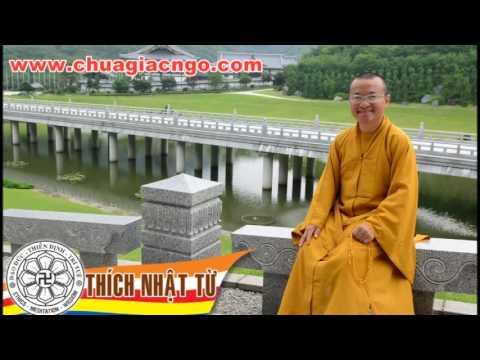 Kinh Dược Sư 7: Phương pháp chuyển nghiệp để sống thọ (06/01/2006)