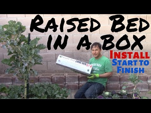 Easy Raised Bed Garden in a Box Install from Start to Finish