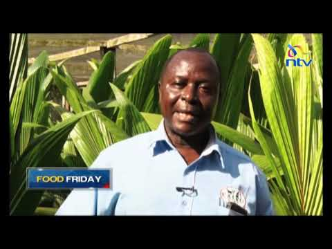 Food Friday:  Rejuvenating coconut farming in the Coast