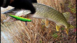 Отчеты о рыбалке тверская обл