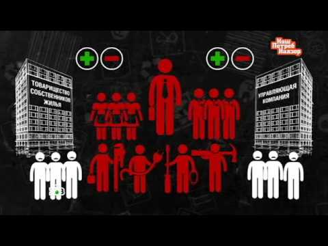 Управляющая компания vs ТСЖ как сэкономить на услугах ЖКХ  Видео НТВRu