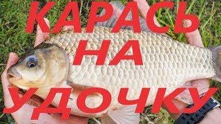Рыбалка в татищевского района саратовской области