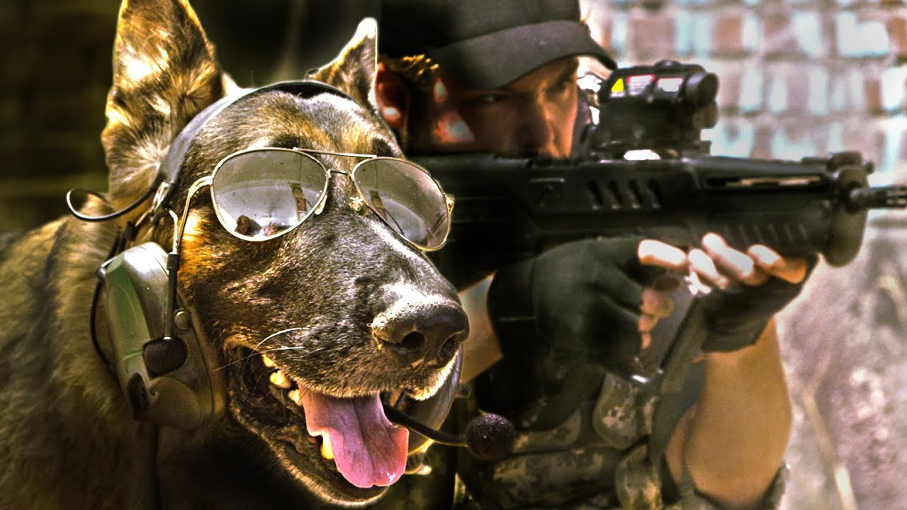Call Of Duty: Bark Ops Is The Most Touching War Game Ever Not Made