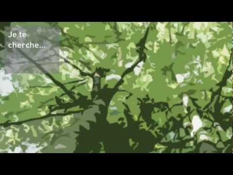 Vidéo de Anne de Gandt