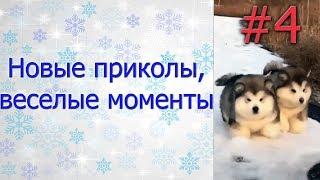 Новые приколы, веселые моменты №4. Язык намертво пристал к мороженому!)