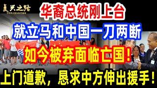 华裔总统刚上台!就立马和中国一刀两断!如今被弃面临亡国!上门道歉,恳求中方伸出援手!