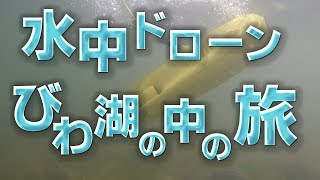 水中ドローンびわ湖の中の旅:近江八幡編