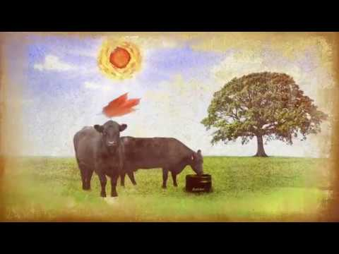 CRYSTALYX® 4 Seasons