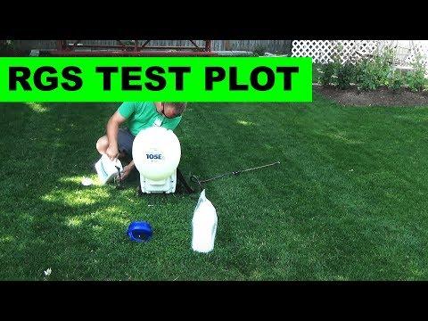 Starting a N-Ext test plot