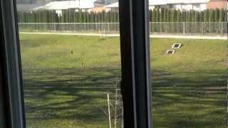 Video walkthru of 3719 Hawthorn