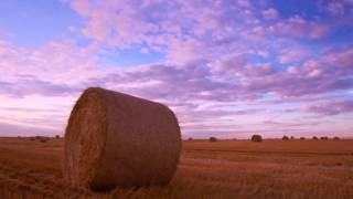 Time Lapse Video Of A Field Covered With Hay Bales.