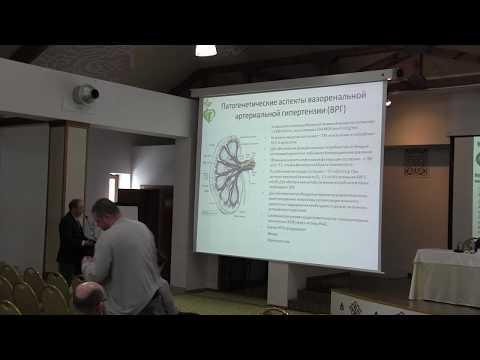 IV Российская школа молодых  специалистов  Рентгенохирургическое лечение поражений висцеральных арте