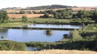 preview picture of video 'Dolina Wolicy   Polska wschodnia   Wyżyna Lubelska   Skierbieszów'