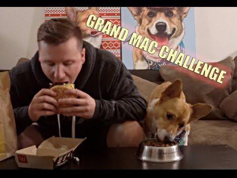 Grand Mac Challenge Dog Against Man!! Did We Beat Matt Stonie?