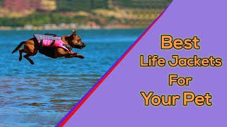 10 Best Dog Life Jackets 2020    Life Jackets For Dogs