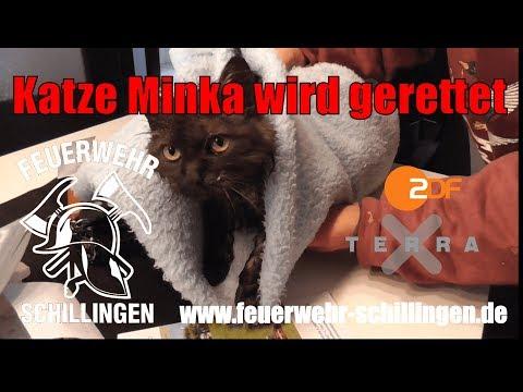 Feuerwehr Schillingen - ZDF Terra X Sendung zum Tierrettungseinsatz Katze im Rohr