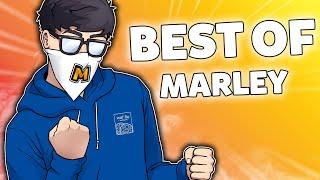 Marley's BEST OF 2020 (so far) - Rainbow Six Siege