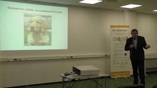 Бруцеллез собак. Общая характеристика, возбудители, распространенность, патогенез