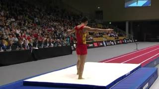 2015 Male Tumbling World Championships Finals