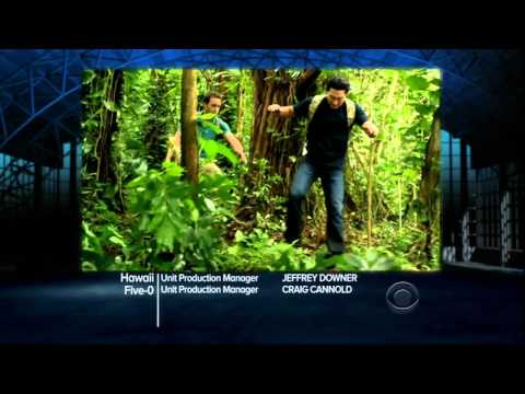 Hawaii Five-0 2.03 (Preview)