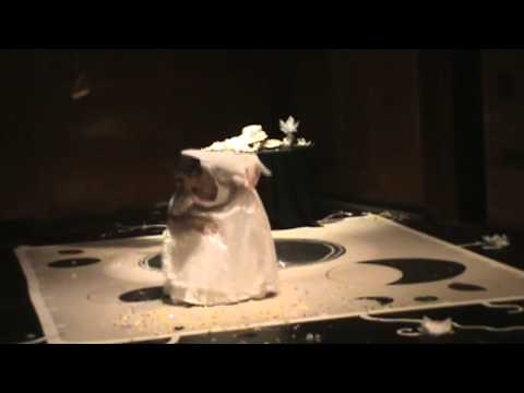 Miss Donnithorne's Maggot excerpt from Nuit Blanche Ottawa 2014