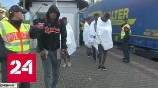 Европа устала: зверские нападения мигрантов на местных жителей участились