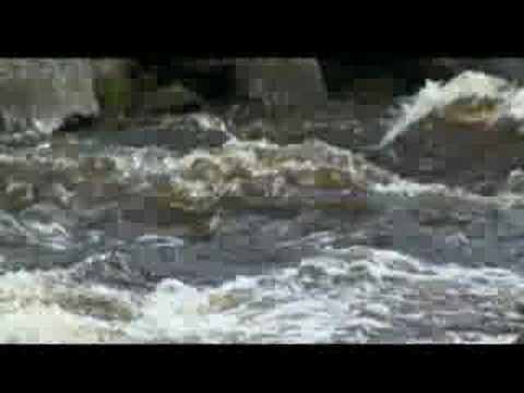 Restoring the Cheat River