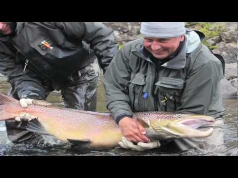 40lb Atlantic Salmon on the Fly-Russia