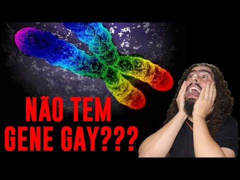 NÃO EXISTE GENE GAY?? (#Pirula 308)