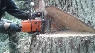 Валка лісу. Shtill 361