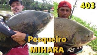 Os Tambacus gigantes do Mihara - Fishingtur na TV 403