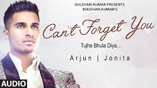 Arjun: Can't Forget You (Tujhe Bhula Diya) Full AUDIO Song ft. Jonita Gandhi | T-Series