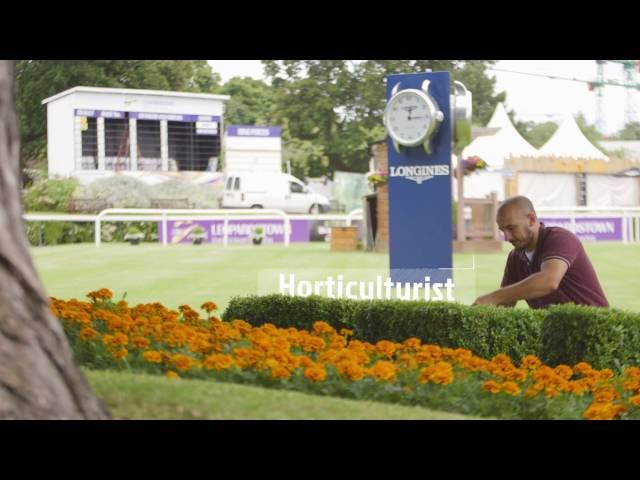 A career in the Horse Racing Industry