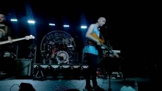 Bone Digger - Bear Hands (Live)