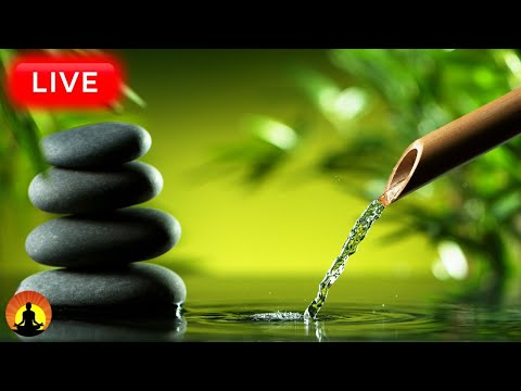 🔴Relaxing Music 24/7, Healing Music, Meditation Music, Spa Music, Sleep, Zen, Study Music, Yoga