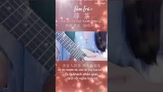 Vietsub (Cover đoạn ngắn)|| Tầm Trà - Diệp Lý |  寻茶 -  叶里