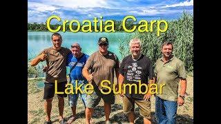 Croatia Carp