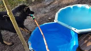 La saison des piscines est ouverte!!