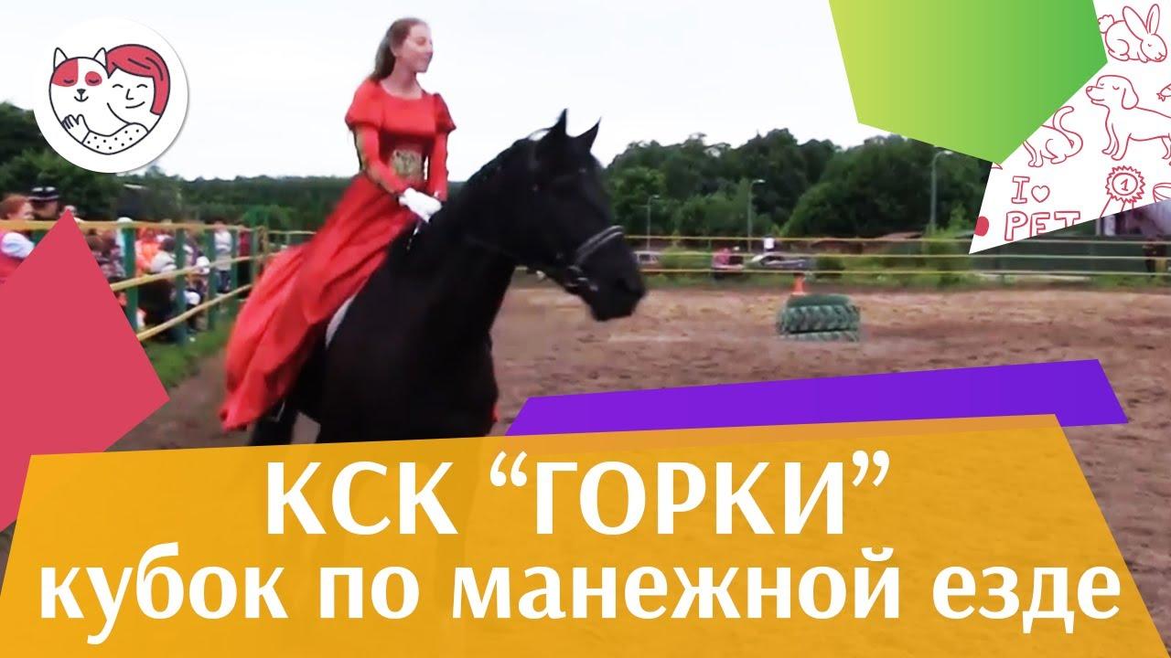 Летний кубок КСК Горки по манежной езде КЮР часть 26 на ilikepet