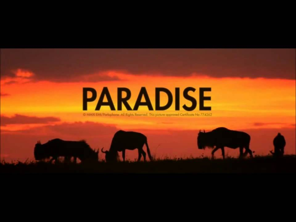 Belilah Lagu Coldplay   Paradise Instrumental dan kasetnya di Toko Terdekat Maupun di  iT download lagu mp3 Download Mp3 Coldplay Paradise Instrumental