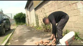 Qui fait la loi en prison ? - Documentaire