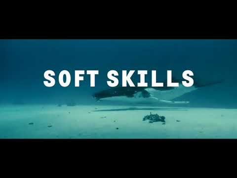 Что важнее сегодня  Hard skills или Soft skills