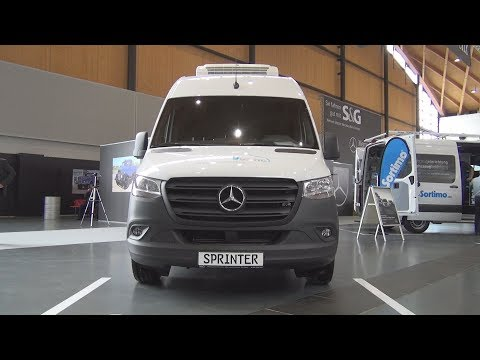 Mercedes-Benz Sprinter 316 CDI Cooling Refrigerated Panel Van (2020) Exterior and Interior