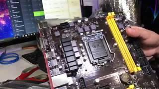 BIOSTAR TB250-BTC PRO 7 Various GPU cards minergate mining
