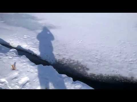мой пруд зимой