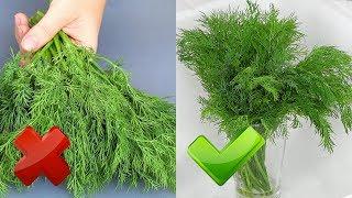 УКРОПНАЯ ЗАВИСИМОСТЬ  Не покупай зелень, если видишь ЭТО!