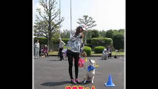 動画サムネイル:2013年 春のワンパク同窓会!!